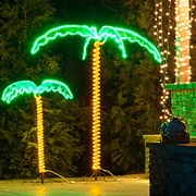 Lighted Palm Trees make a tropical paradise