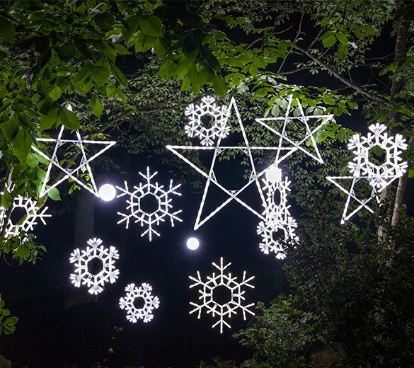 lighted snowflakes and stars hanging from tree branches