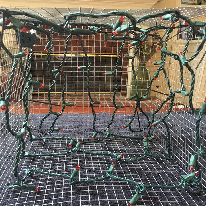 Secure led light strings to the inside of your chicken wire present frame