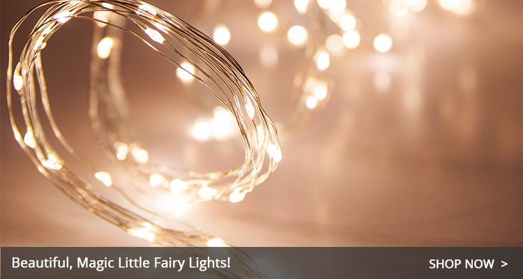 Christmas fairy lights