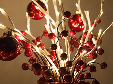 Lighted Christmas Branches
