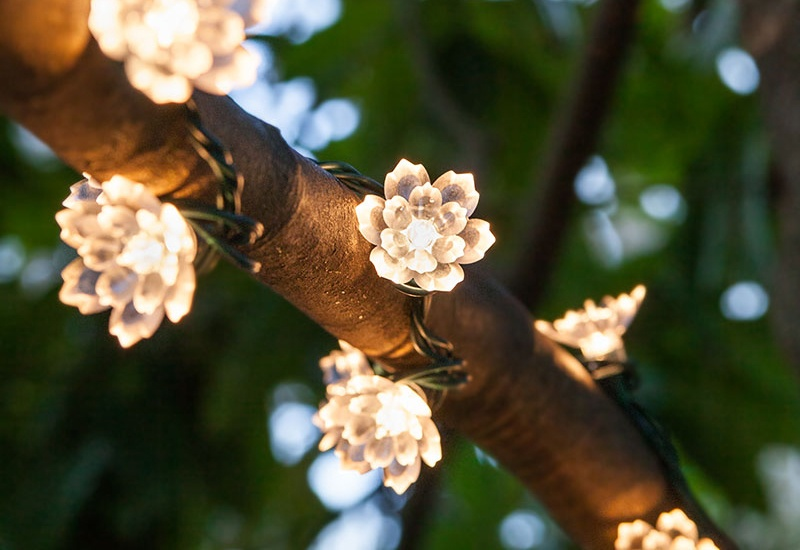 Wedding Flower Lights