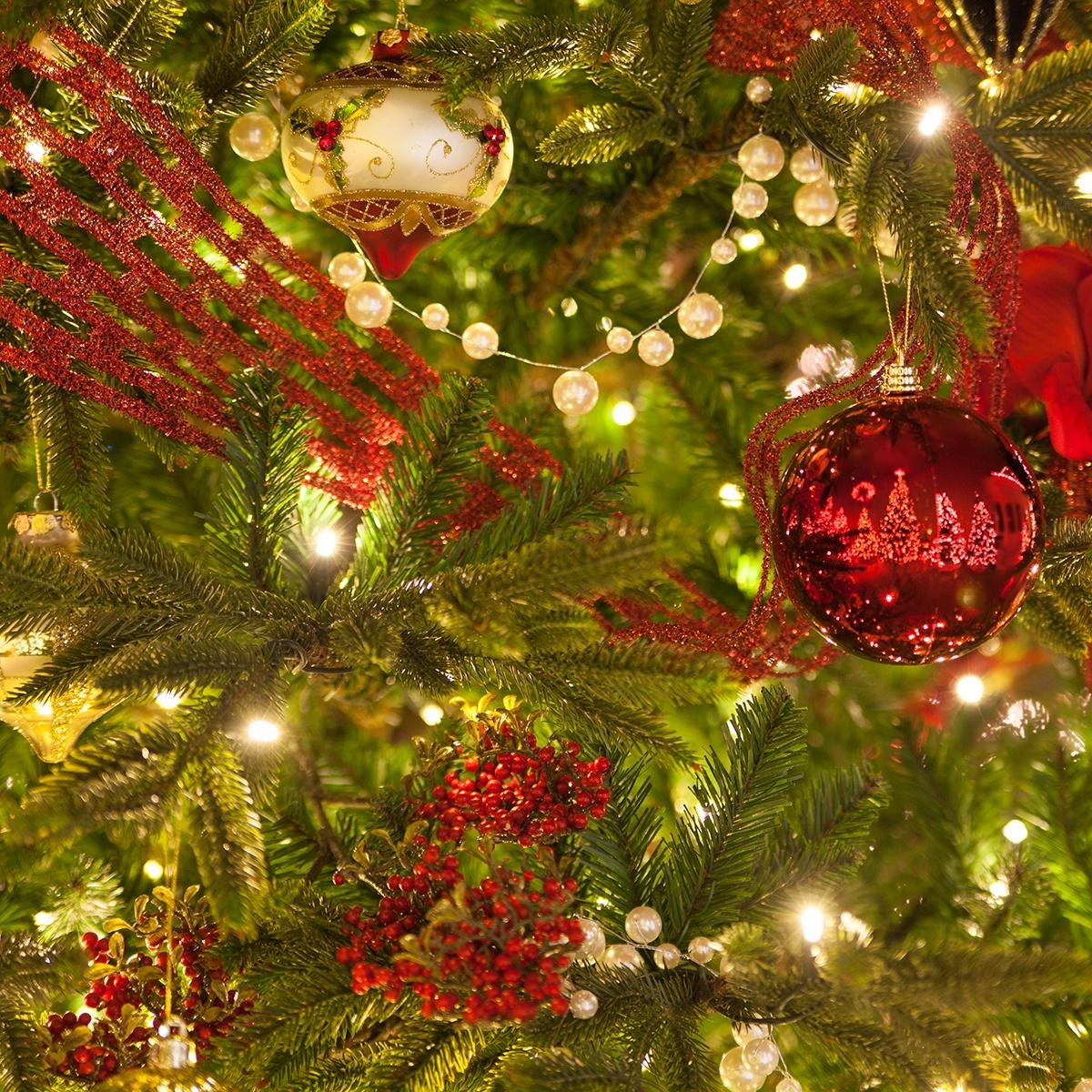 Prelit Christmas Tree Guide
