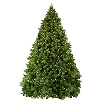 Sequoia Prelit Christmas Tree
