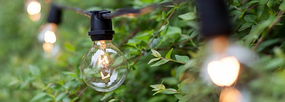 Commercial Grade Clear Patio String Lights