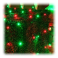 Red and Green Net Lights