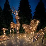 Outdoor Christmas Animal Decorations