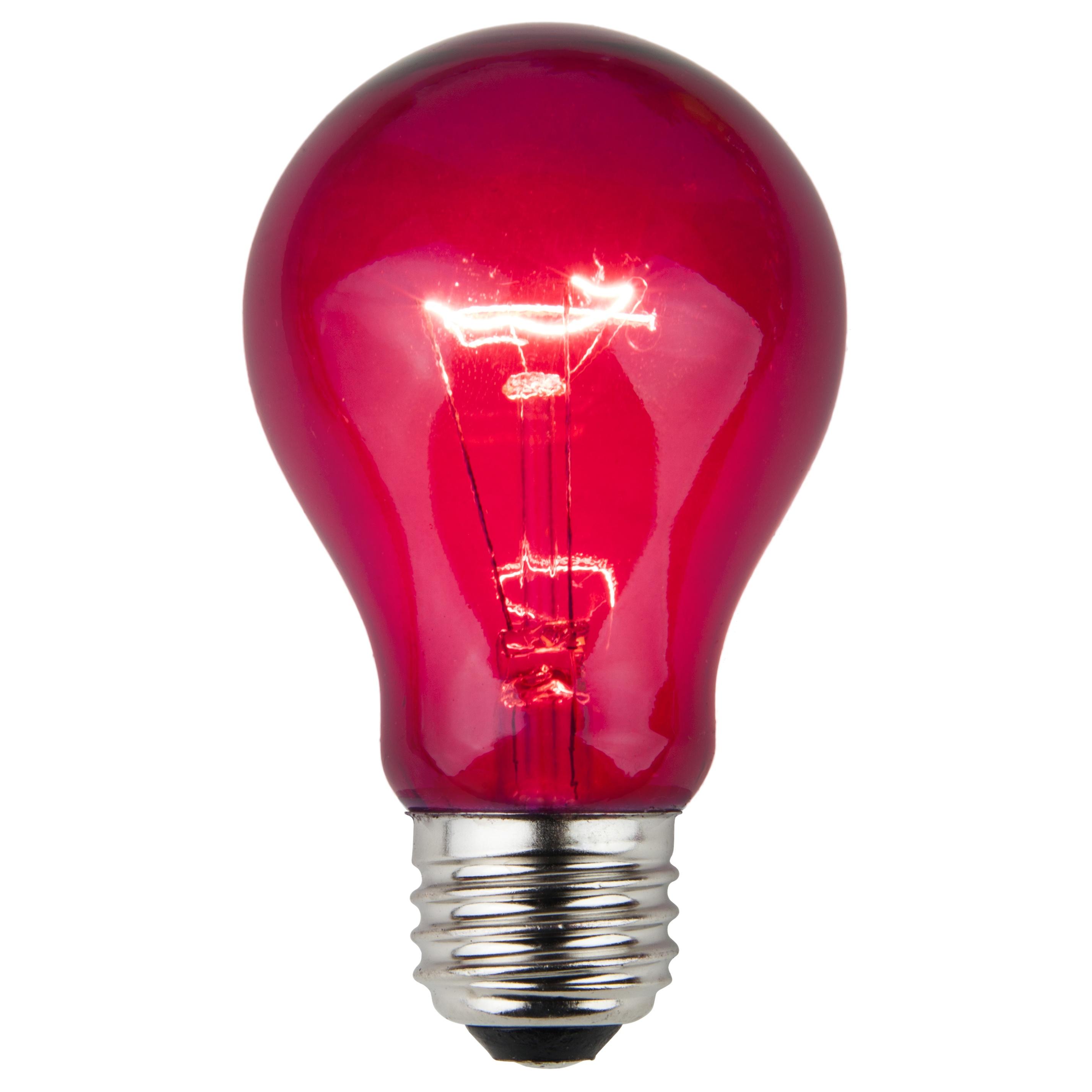 E26 Party And Sign Bulbs A19 Transparent Purple 25 Watt