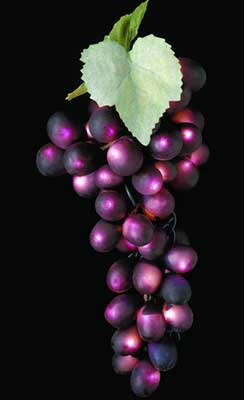 Novelty Lights Triple Grape Clusters Purple
