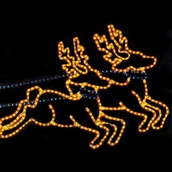 Extra Reindeer Team