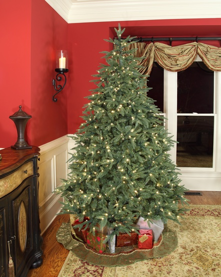 6.5' Full Pre-Lit Blue Aspen Fir Tree, 550 Warm White LED Lights