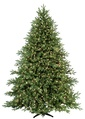 7.5' Full Carolina Fir Tree, 900 Multicolored Lamps