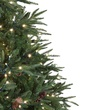 6.5' Full Pre-Lit Colorado Pine Tree, 550 Warm White LED Lights