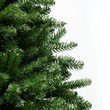 12' Full Douglas Fir Tree, 2000 Clear Lamps