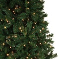 7.5' Full Pre-Lit Cumberland Fir Tree, 800 Multicolored Lamps