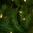 6.5' Pre-Lit Norway Spruce LED Tree, 800 Warm White LED Lights