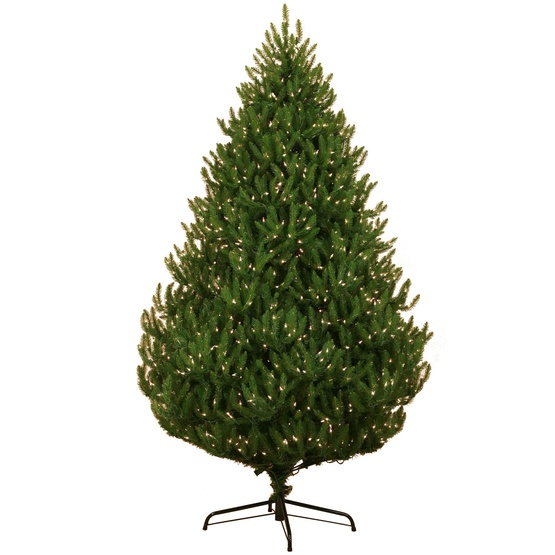 9.5' Pre-Lit Norway Spruce LED Tree, 1500 Warm White LED Lights