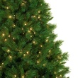 6.5' Pre-Lit Dunhill Fir Tree, 400 Clear Lights