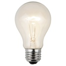 A19 Transparent Clear, 25 Watt Replacement Bulbs