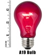 A19 Transparent Purple, 25 Watt Replacement Bulbs