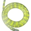 "30' Lime Green LED Rope Light, 2 Wire 1/2"", 120 Volt"