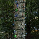 LED Multi-Colored 5MM Conical 100L 2'x6' Trunk Wrap Rectified