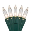 "50 Clear Christmas Tree Mini Lights, 2.5"" Spacing, Green Wire"