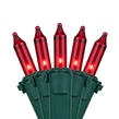 "50 Red Mini Christmas Lights, 4"" Spacing, Premium, Green Wire"