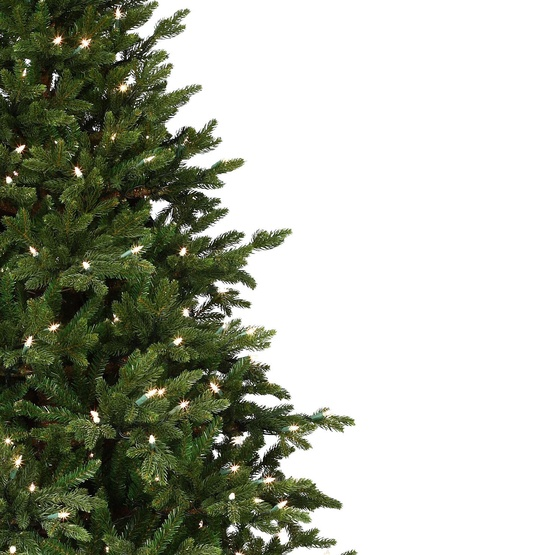 6.5' Full Canadian Fir Tree, 650 Clear Lamps