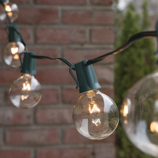 Patio Lights - Commercial Clear Globe String Lights, 25 G50 E17 Bulbs Green Wire