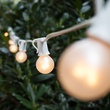 50' Outdoor Patio String with 50 G30 Pearl White Lights