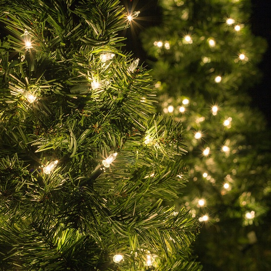 3' Walkway Pre-Lit Winchester Fir Tree, 100 Warm White LED Lamps
