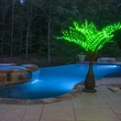 7.5' LED Bottle Palm Tree - Natural Green