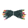 "35 Multi Color Mini Lights, 4"" Spacing, Green Wire"