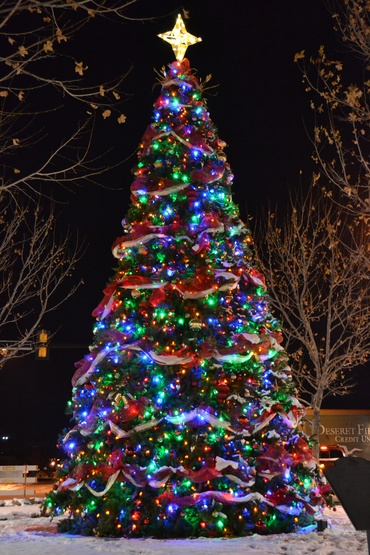 14' Giant Everest Commercial Christmas Tree, C7 Multicolor LED Lights
