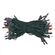 "50 Blue, Red, Clear Mini Christmas Lights, 6"" Spacing, Premium, Green Wire"