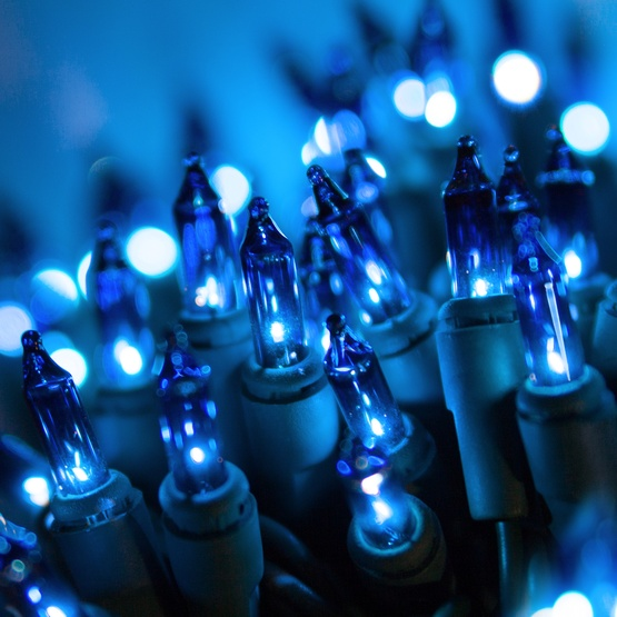 "50 Blue Christmas Tree Mini Lights, 6"" Spacing, Green Wire"