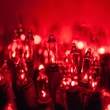 "50 Red Christmas Tree Mini Lights, 6"" Spacing, Green Wire"