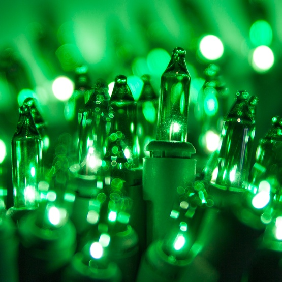 "50 Green Mini Christmas Lights, 6"" Spacing, Premium, Green Wire"