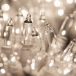 "50 Clear Christmas Tree Mini Lights, 2.5"" Spacing, White Wire"