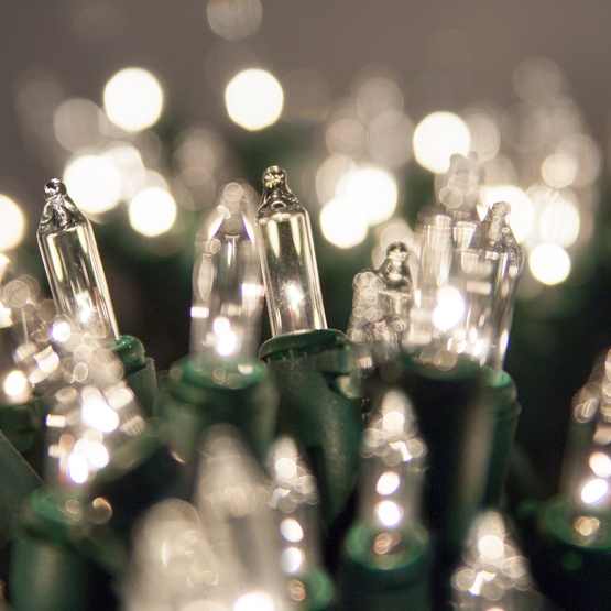 "50 Clear Mini Christmas Lights, 8"" Spacing, Premium, Green Wire"