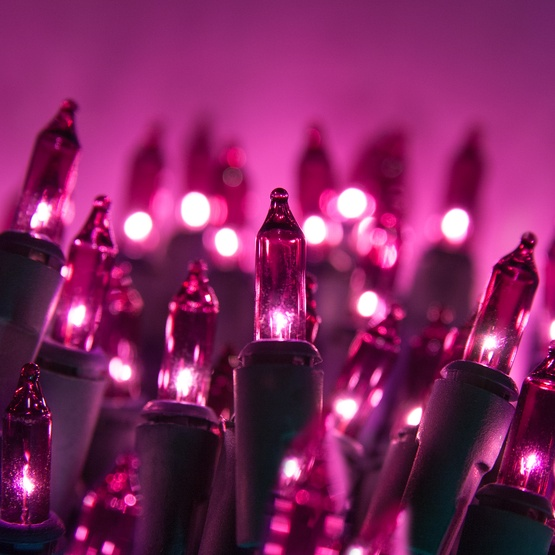 """Commercial 100 Purple Christmas Mini Lights, 6"""" Spacing, Green Wire"""