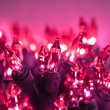 """35 Pink Mini Lights, 4"""" Spacing, Green Wire"""