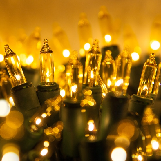 "100 Yellow Christmas Tree Mini Lights, 2.5"" Spacing, Green Wire"