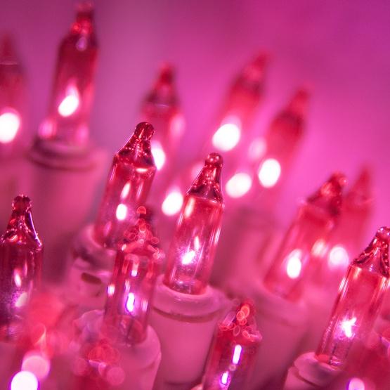 """50 Bubble Gum Mini Christmas Lights, 6"""" Spacing, Premium, Bubble Gum Wire"""