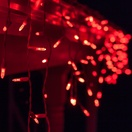 70 M5 Red LED Icicle Lights