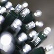 "Commercial 25 5mm Cool White LED Christmas Lights, 4"" Spacing"