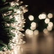 "100 Clear Twinkle Christmas Tree Mini Lights, 6"" Spacing, Green Wire"