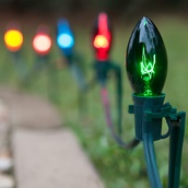 C9 Multicolor Christmas Pathway Lights