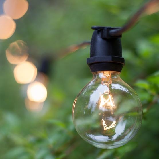 G50 Transparent Clear, 7 Watt Replacement Bulbs